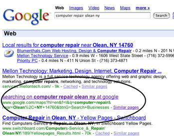 Google Organic returning results from Map in organic search